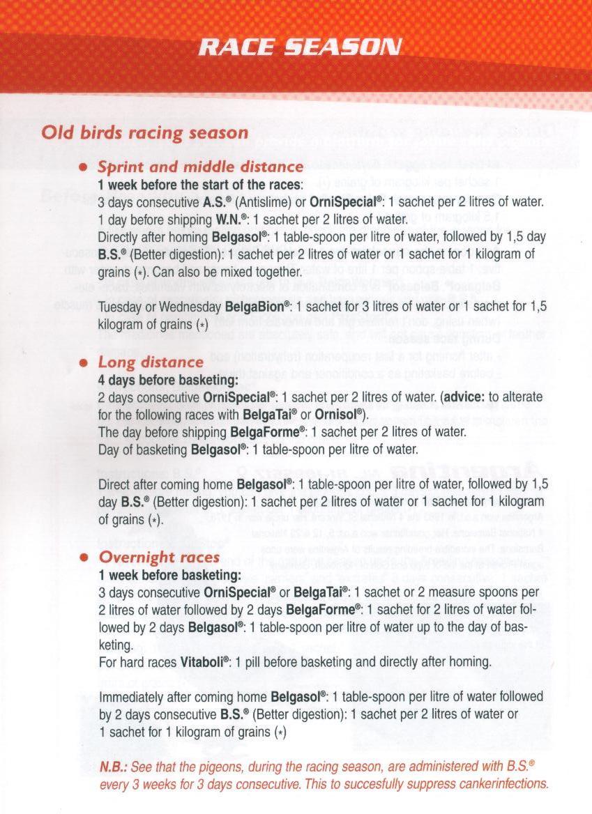 BELGICA DE WEERD Race Season Program » NewTree - Your one-stop